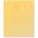 Bazzill - 8.5 x 11 Vellum - Gold