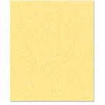 Bazzill Basics - 8.5 x 11 Cardstock - Canvas Bling Texture - November Birthstone