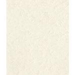 Bazzill Basics - Prismatics - 8.5 x 11 Cardstock - Dimple Texture - Cobblestone