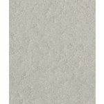 Bazzill - Prismatics - 8.5 x 11 Cardstock - Dimple Texture - Zinc