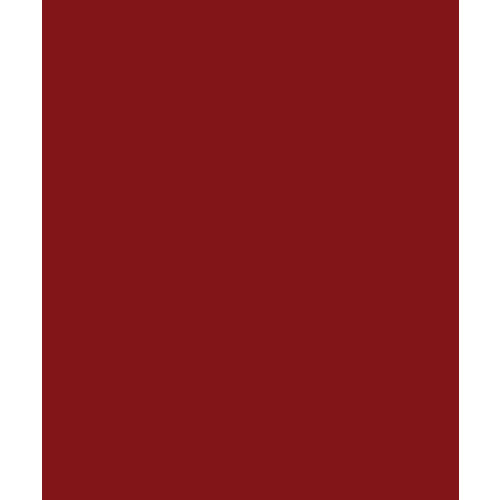 Bazzill - Card Shoppe - 8.5 x 11 Cardstock - Premium Smooth Texture - Peppermint
