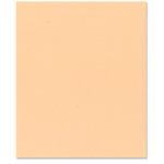 Bazzill - 8.5 x 11 Cardstock - Grasscloth Texture - Peach Glow