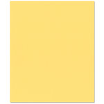 Bazzill - 8.5 x 11 Cardstock - Grasscloth Texture - Pollen