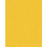 Bazzill Basics - 8.5 x 11 Cardstock - Grasscloth Texture - Desert Sun