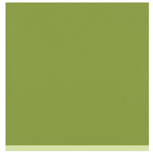 Bazzill Basics - Two Scoops Collection - 12 x 12 Sandable Cardstock - Prickly Pear