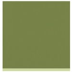 Bazzill Basics - Two Scoops Collection - 12 x 12 Sandable Cardstock - Luscious Lime