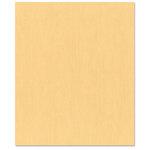 Bazzill Basics - 8.5 x 11 Cardstock - Canvas Texture - Harvest