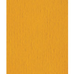Bazzill Basics - 8.5 x 11 Cardstock - Orange Peel Texture - Butterscotch