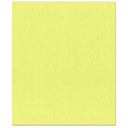 Bazzill - 8.5 x 11 Cardstock - Canvas Texture - Limeade