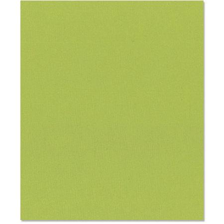 Bazzill Basics - 8.5 x 11 Cardstock - Canvas Texture - Parakeet