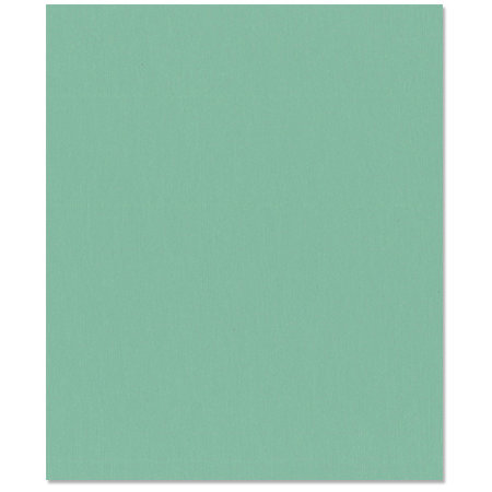 Bazzill Basics - 8.5 x 11 Cardstock - Grasscloth Texture - Navajo