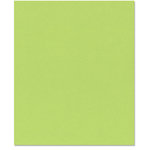 Bazzill - 8.5 x 11 Cardstock - Smooth Texture - Apple Crush