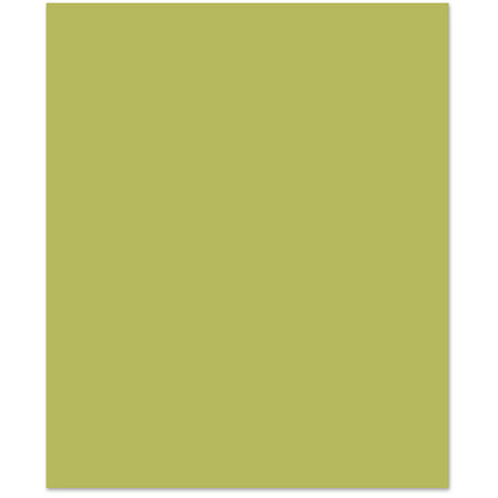 Bazzill Basics - 8.5 x 11 Cardstock - Smooth Texture - Hummingbird