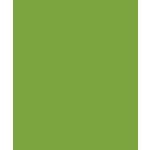 Bazzill - Card Shoppe - 8.5 x 11 Cardstock - Premium Smooth Texture - Easter Grass