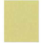 Bazzill Basics - 8.5 x 11 Cardstock - Canvas Texture - Pear