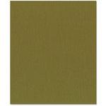 Bazzill Basics - 8.5 x 11 Cardstock - Grasscloth Texture - Palo Verde
