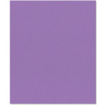 Bazzill - 8.5 x 11 Cardstock - Grasscloth Texture - Purple Pizzazz