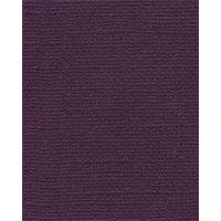 Bazzill Basics - Bulk Cardstock Pack - 25 Sheets - 8.5x11 - Sassy