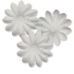 Bazzill Basics - Bitty Blossoms Flowers - Approximately 35 Pieces - White
