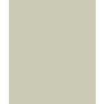 Bazzill - Card Shoppe - 8.5 x 11 Cardstock - Premium Smooth Texture - Taffy