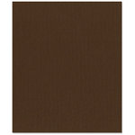 Bazzill - 8.5 x 11 Cardstock - Canvas Texture - Brown