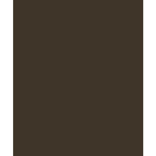 Bazzill - Card Shoppe - 8.5 x 11 Cardstock - Premium Smooth Texture - Candy Bar