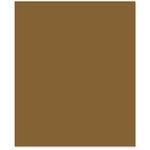 Bazzill - 8.5 x 11 Cardstock - Smooth Texture - Milkshake
