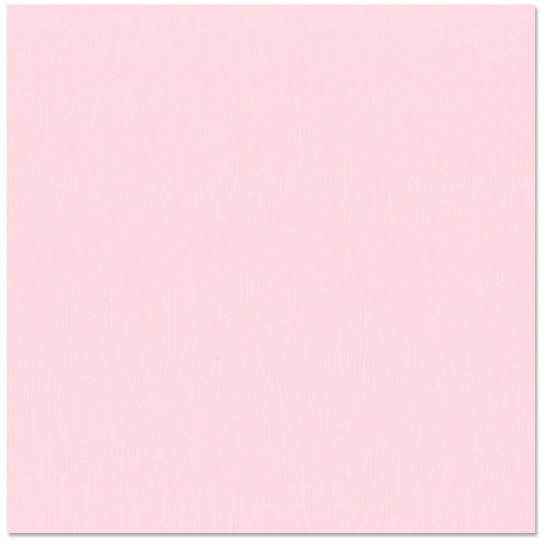 Bazzill - 12 x 12 Cardstock - Canvas Texture - Petalsoft
