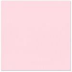 Bazzill Basics - 12 x 12 Cardstock - Canvas Texture - Petalsoft