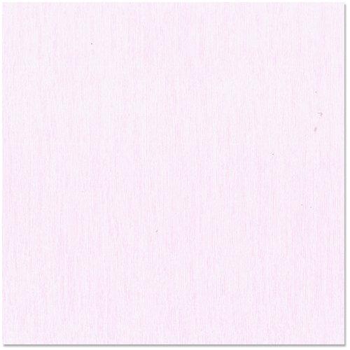 Bazzill Basics - 12 x 12 Cardstock - Grasscloth Texture - Tutu Pink