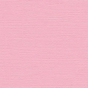 Bazzill Basics - Bulk Cardstock Pack - 25 Sheets - 12x12 - Fussy