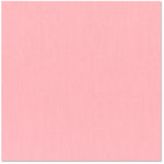 Bazzill - 12 x 12 Cardstock - Grasscloth Texture - Fussy