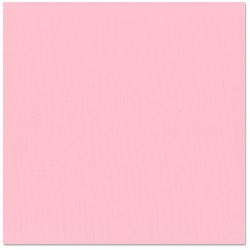 Bazzill - 12 x 12 Cardstock - Canvas Texture - Romance