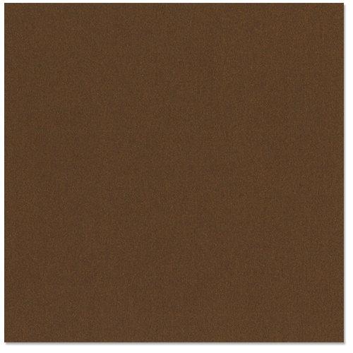 Bazzill - 12 x 12 Metallic Cardstock - Charlie