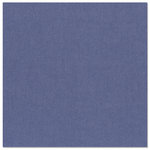 Bazzill - 12 x 12 Metallic Cardstock - Ziff