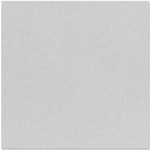 Bazzill - 12 x 12 Metallic Cardstock - Platinum