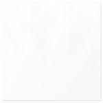 Bazzill - 12 x 12 Vellum - White