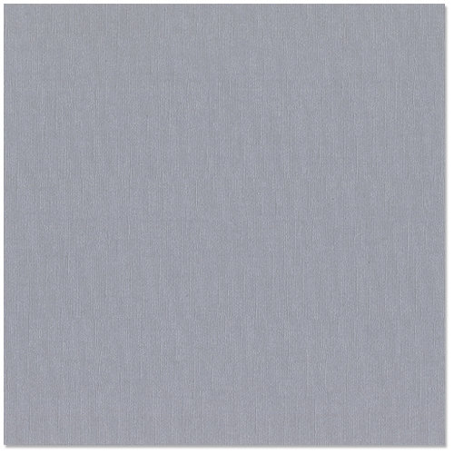 Bazzill - 12 x 12 Cardstock - Canvas Bling Texture - Tiara