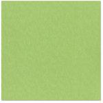 Bazzill Basics - 12 x 12 Cardstock - Canvas Bling Texture - Envy