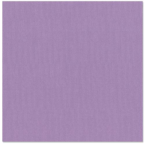 Bazzill - 12 x 12 Cardstock - Canvas Bling Texture - Flirty