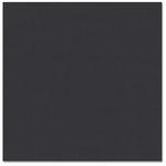 Bazzill - Prismatics - 12 x 12 Cardstock - Dimpled Texture - Black
