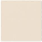 Bazzill - Prismatics - 12 x 12 Cardstock - Dimpled Texture - Vanilla Cream