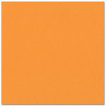 Bazzill - Prismatics - 12 x 12 Cardstock - Dimpled Texture - Intense Orange