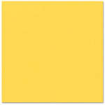 Bazzill - Prismatics - 12 x 12 Cardstock - Dimpled Texture - Intense Yellow