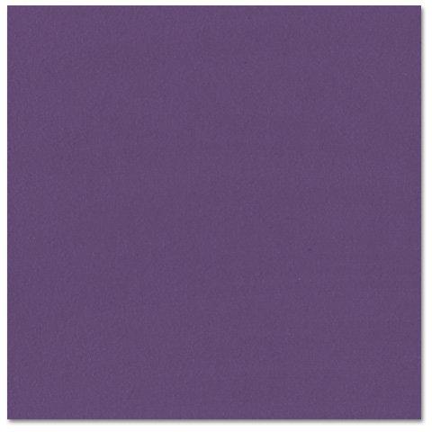 Bazzill - Prismatics - 12 x 12 Cardstock - Grasscloth Texture - Classic Purple