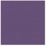 Bazzill - Prismatics - 12 x 12 Cardstock - Dimpled Texture - Classic Purple