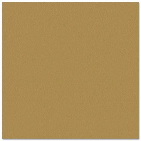 Bazzill - Prismatics - 12 x 12 Cardstock - Dimpled Texture - Tawny Medium
