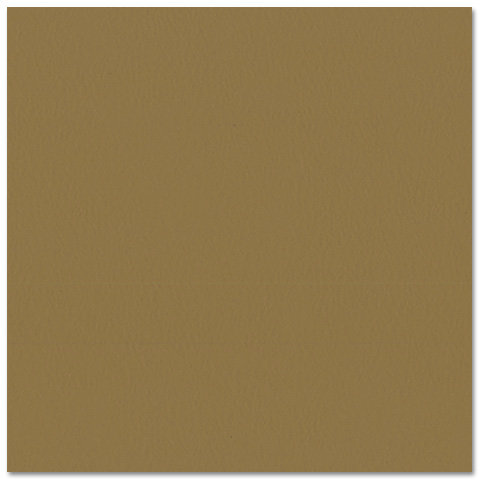 Bazzill - Prismatics - 12 x 12 Cardstock - Dimpled Texture - Suede Brown Medium