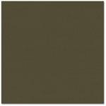 Bazzill - Prismatics - 12 x 12 Cardstock - Dimpled Texture - Birchtone Dark