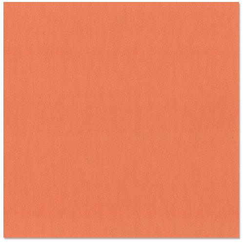 Bazzill - 12 x 12 Cardstock - Grasscloth Texture - Arroyo